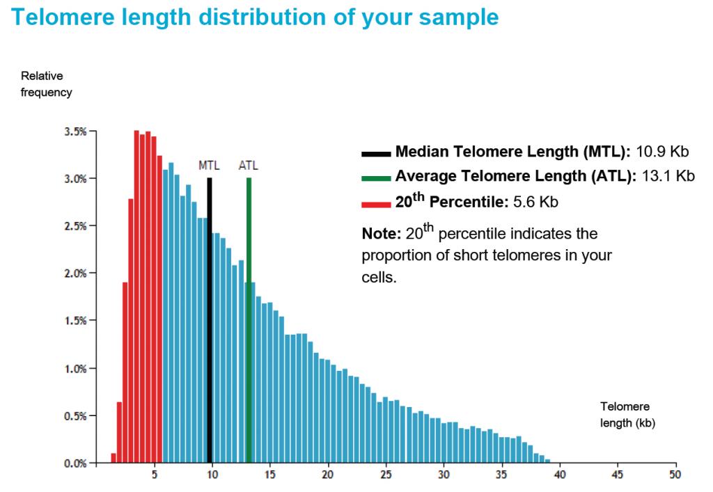 telomer analiz testi - telomer uzunluğu